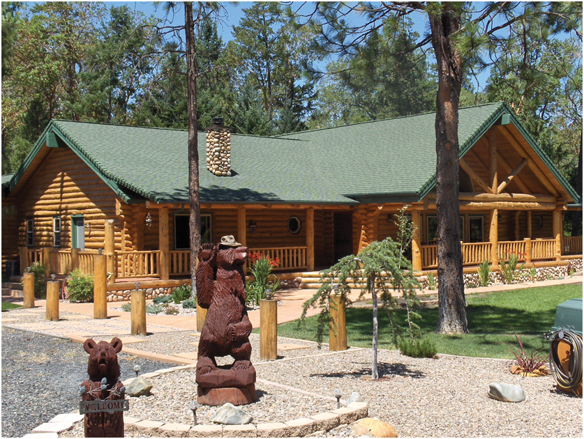 Log Homes Models and Cabin Kits by Homestead Log Homes